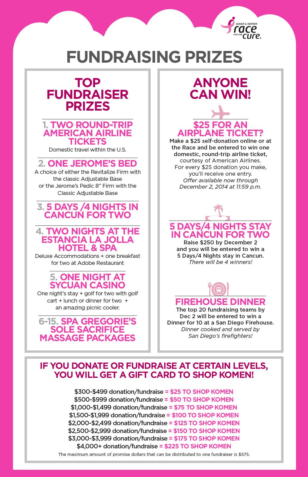 fundraising prizes2