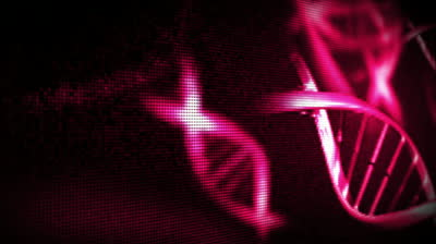 stock-footage-pink-helices-against-a-black-background
