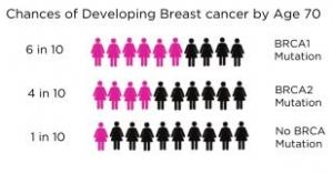 brca-blog-breast-cancer